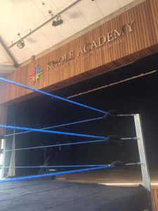 UWN / United Wrestling Network